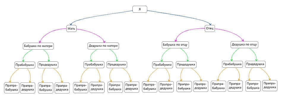Схема генеалогического дерева