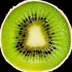 kiwi-krug-reiki