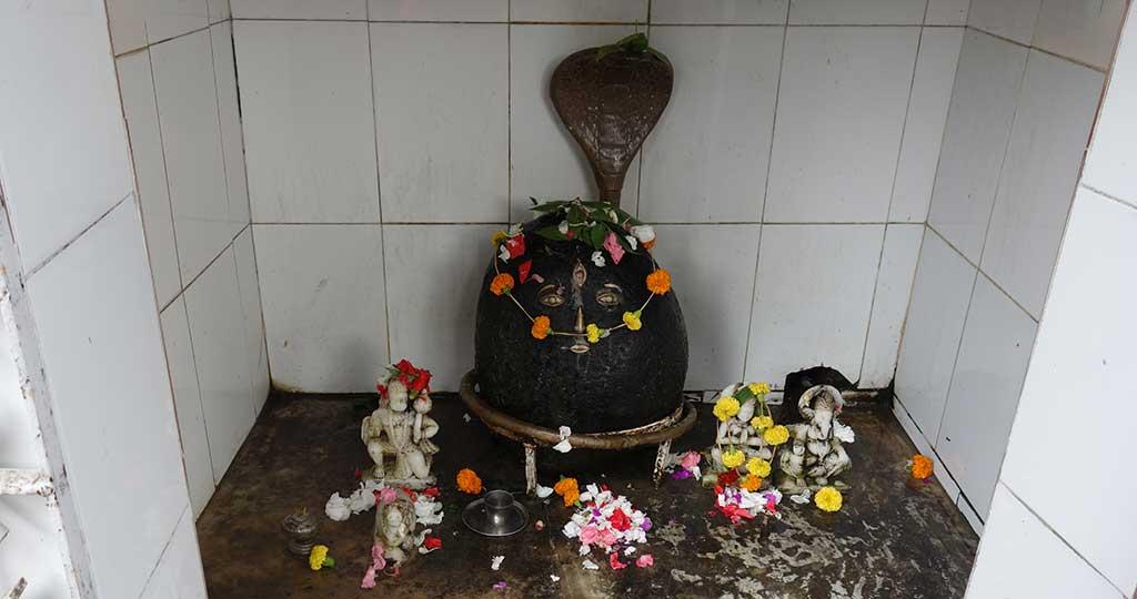 почитание богини-матери в индии
