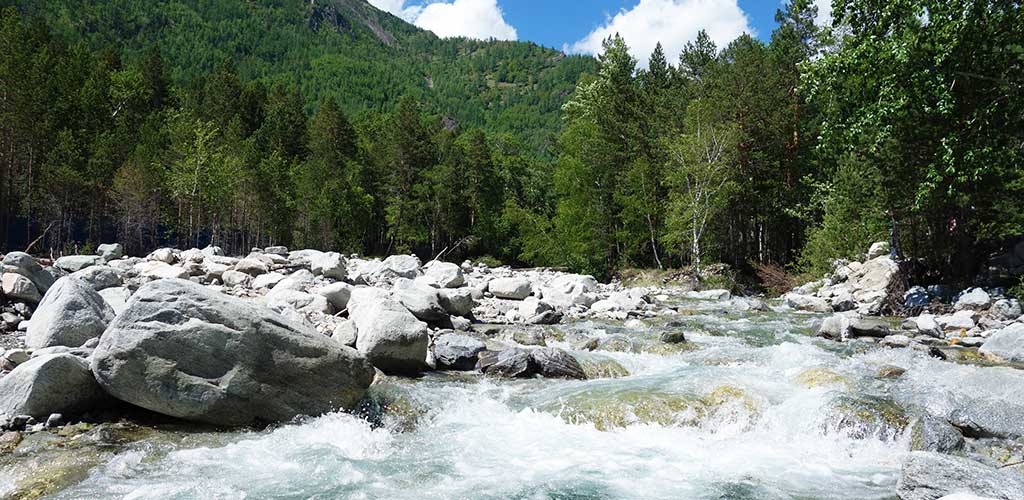 Горная река Кынгырга, Аршан, Бурятия