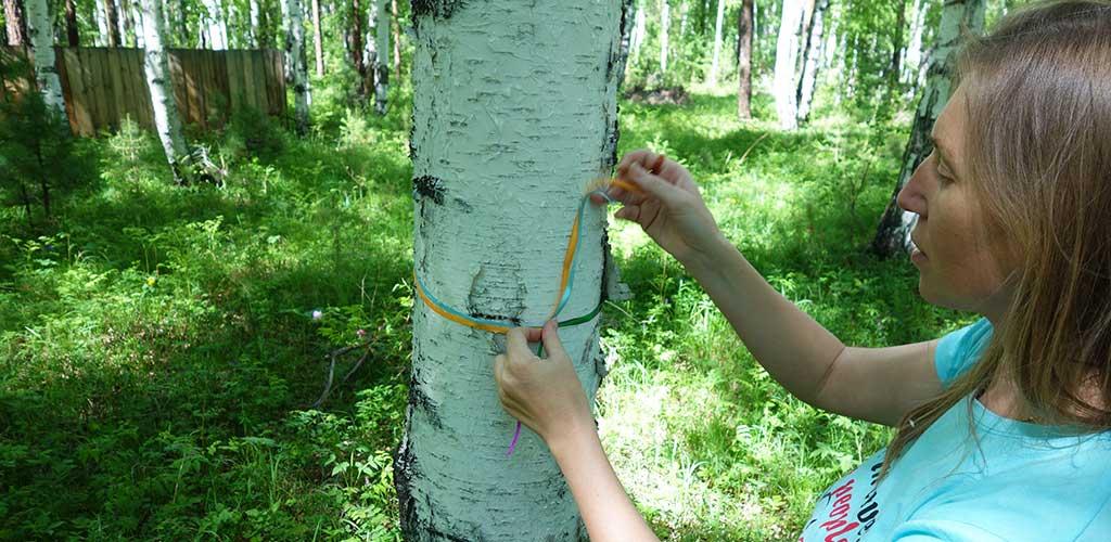 Ритуал почитания деревьев
