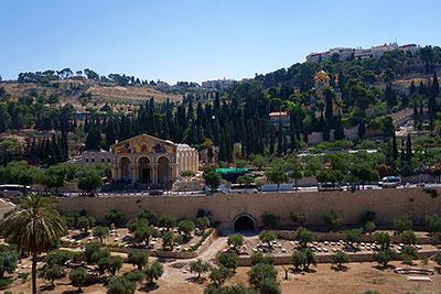 Район Гефсимания с Гефсиманским садом в Иерусалиме